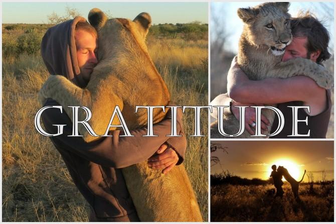 gratitude hug